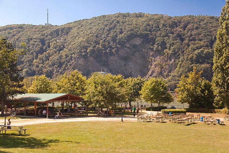 Da kam Urlaubsstimmung auf: das 7. Jahrestreffen fand bei bestem Sommerwetter direkt am Rhein statt