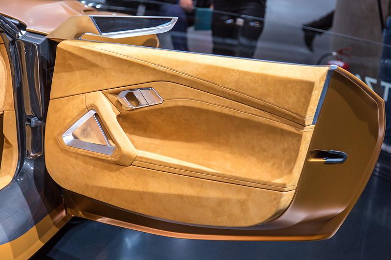 BMW Concept Z4, Tür.