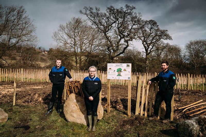 MINI Boost for Tiny Forest Initiative, die BMW Group Swindon-Auszubildende Tia Hollis, Cody Tepas und Zac Couldry.