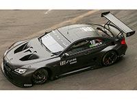 Augusto Farfus feiert mit dem 18. BMW Art Car Platz zwei im Samstagsrennen von Macau