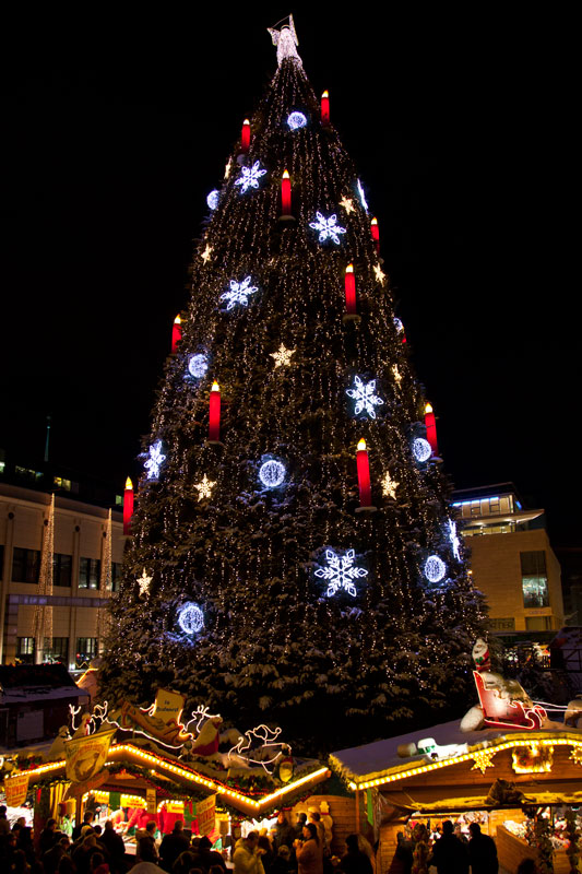 Größter Tannenbaum Deutschlands.Foto Grösster Weihnachtsbaum In Deutschland Auf Dem Dortmunder